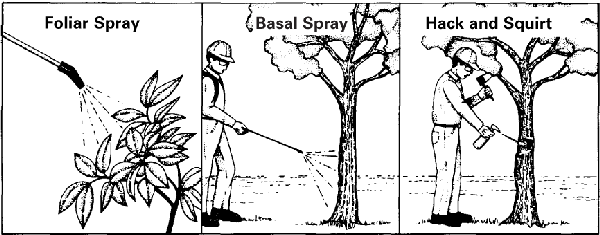 Illustrations of foliar spray, basal spray, and hack and squirt