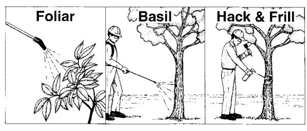 Illustration of foliar, basal, hack & frill herbicide applicatio