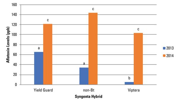 Figure 7. Average AF contamination for Syngenta N74R-3000GT (Yie