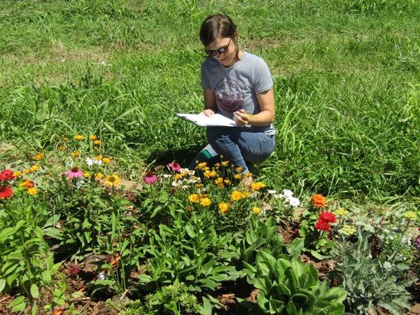 Color photo of woman with clipboard next to flower bed