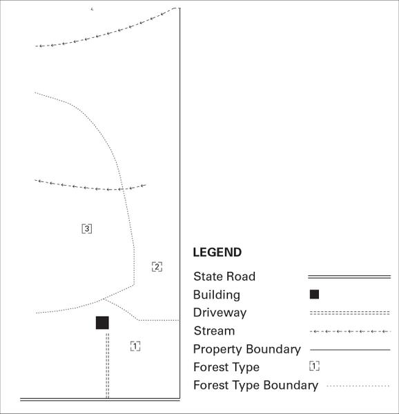 Map illustrating property features, boundaries, and forest types
