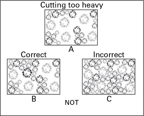 Illustration of how to correctly adjust cutting intensity
