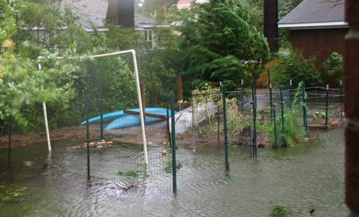 Photo of fenced garden with floodwater covering plants
