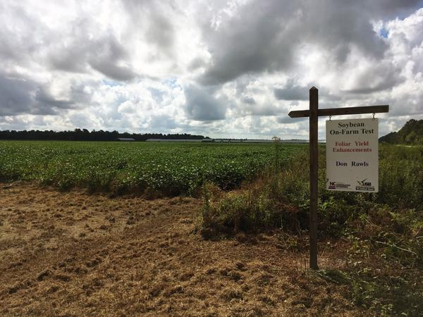 "A sign reading ""Soybean On-Farm Test"" at edge of a field."