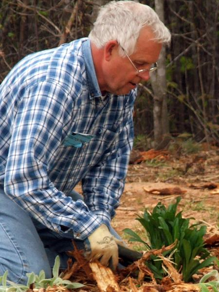 NC EMGV demonstrating gardening techniques in Burke County.