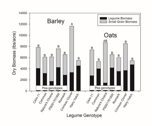 Figure 2, cover crop biomass graph of barley and oats