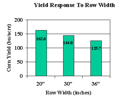 Figure 2-3. Corn yields at three different row widths in 1996 Ca
