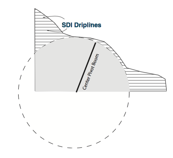Figure 2. Irregularly shaped fields are better suited to SDI