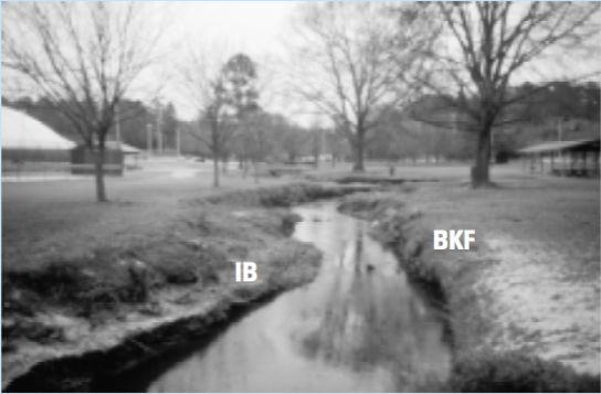 Figure 2d. Hominy Creek, Wilson County, E5 stream type.