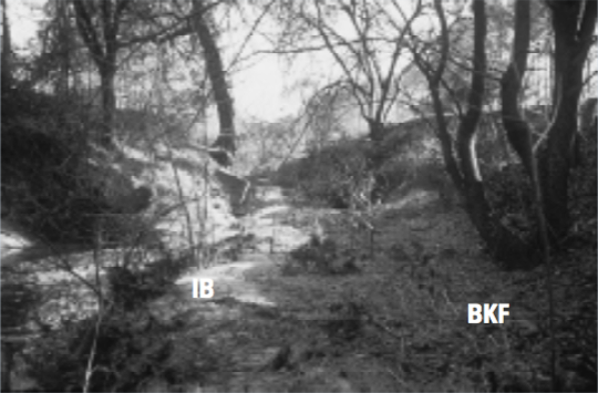 Figure 2b. Rocky Branch, Wake County, G4/F4 stream type.