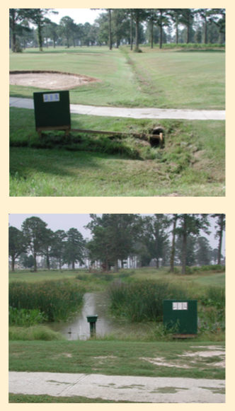 Figure 4. Old drainageway became wetland and water hazard