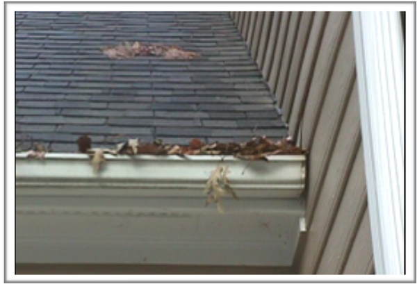 Clean debris from gutters regularly.