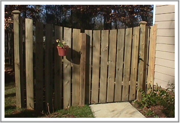 Inspect fences and gates.