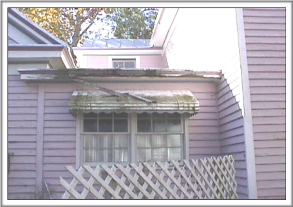 Check for damaged gutters and downspouts.