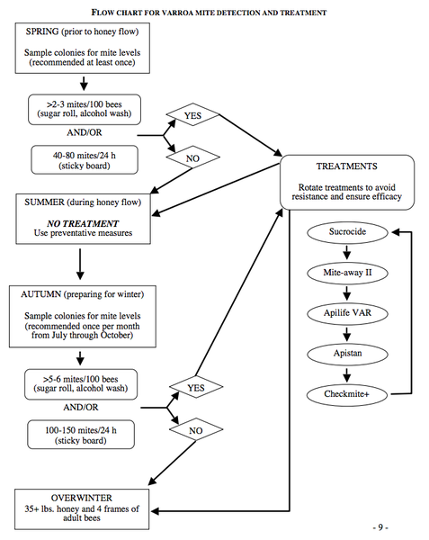 Flow chart for Varroa mite detection and treatment.