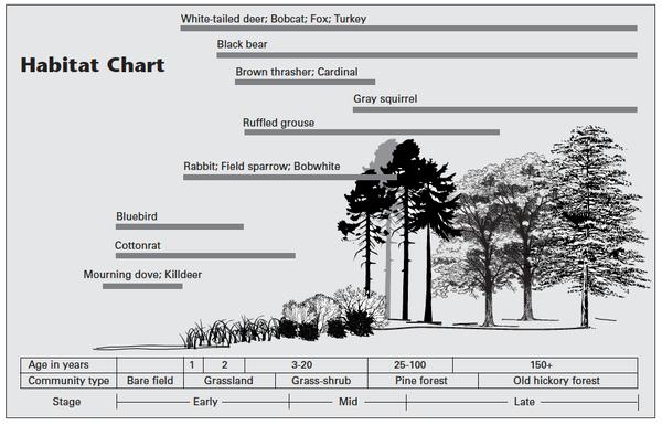 Forest habitat chart.