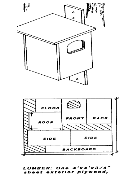 Figure 1. Owl box construction diagram and cutting pattern.