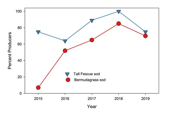 Thumbnail image for 2019 Sod Producers' Report for North Carolina