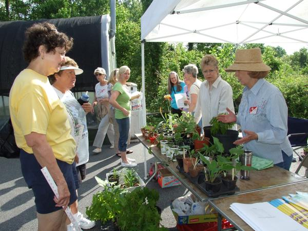 Photo of master gardener plant sale in Burke County