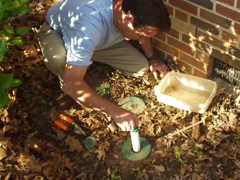Inserting bait tube into a termite bait station