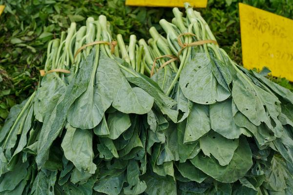 Photo of kale bunches at a market.