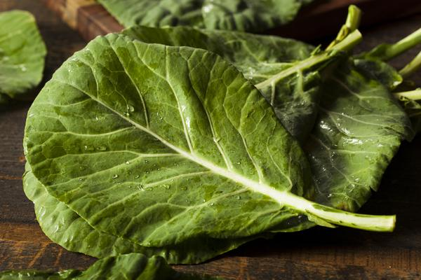 Photo of collard greens leaves.