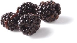 Photo of blackberries.