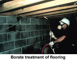 Figure 5. Borate treatment of flooring.