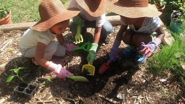 Photo: Children working together to plant their summer garden.