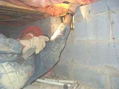 Inspecting a crawlspace for termties