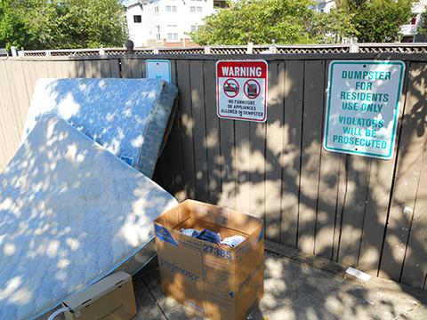 Discarded mattresses can spread bed bugs