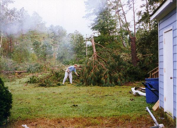 Person cutting limbs on fallen trees after hurricane.
