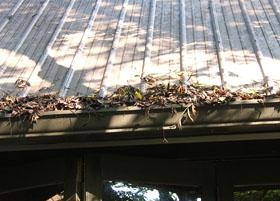 Figure 10. Remove leaves and other debris that clog gutters. Clo