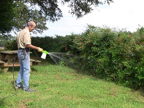 Applying pesticide with a garden hose-end sprayer