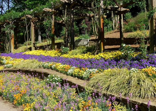 There Are Strong Horizontal Lines In This Landscape With The Stone Wall,  The Colorful Perennials And The Wisteria Arbor. These Lines Draw The Eye  Through ...