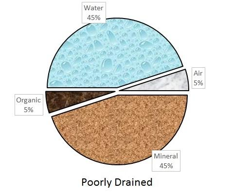 The Distribution Of Solids And Poree In A Poorly Drained Soil