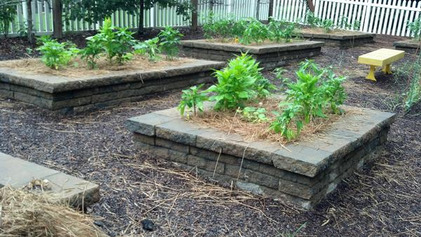 Photo of three planted raised beds framed in stone
