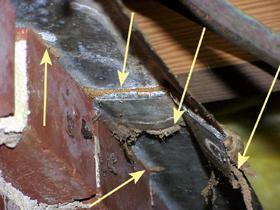 Figure 9. termites can get around termite shielding that is poor