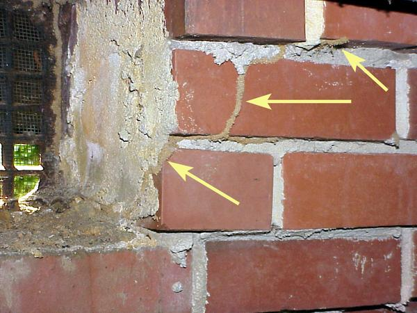 Termite tube extending up a brick foundation wall