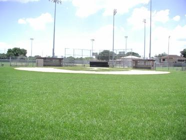 Medium softball/baseball field.
