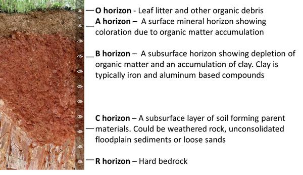 1 soils and plant nutrients nc state extension publications for What is dirt composed of