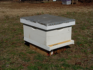 Figure 2. An assembled 'starter' hive.