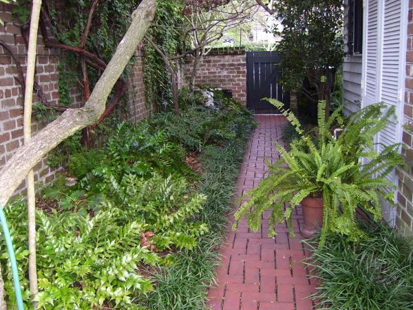 19. Landscape Design | NC State Extension Publications on landscape stone ideas, landscape gardening ideas, landscape flowers ideas, landscape rocks ideas, landscape water ideas, landscape trees ideas, landscape hill ideas, landscape shrubbery ideas, landscape forest ideas,