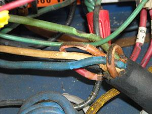 Electrical wiring chewed by fire ants.